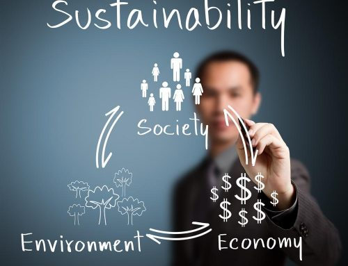 Balance Between Sustainability and Economic Success for Your Business